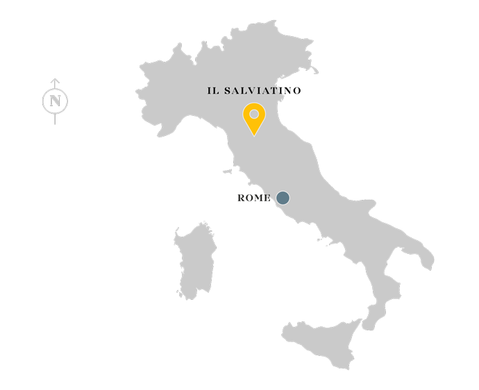 Il Salviatino location map